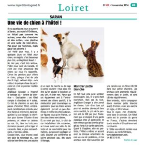 LEPETITSOLOGNOT-article