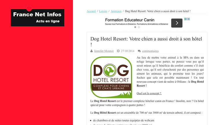 Les chiens aussi ont droit à leur hôtel !