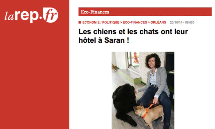 Le premier hôtel canin de France ! Le DOG HOTEL RESORT