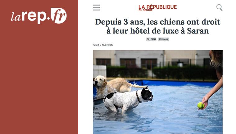Le Dog Hotel Resort accueille vos petits compagnons depuis 3 ans !