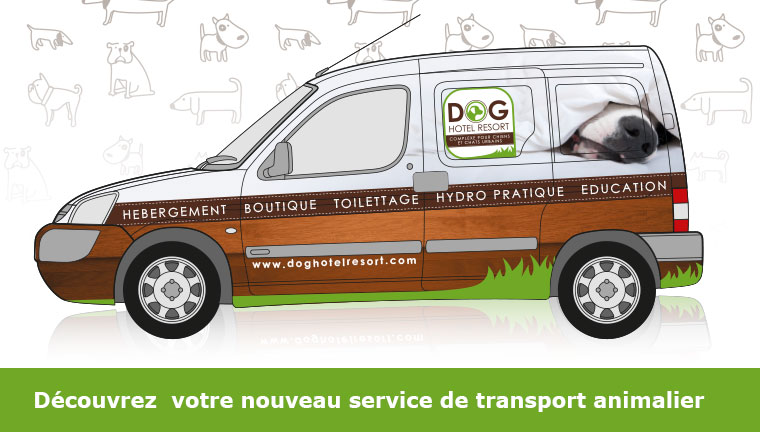 Transport Animalier avec le Dog Hotel Resort