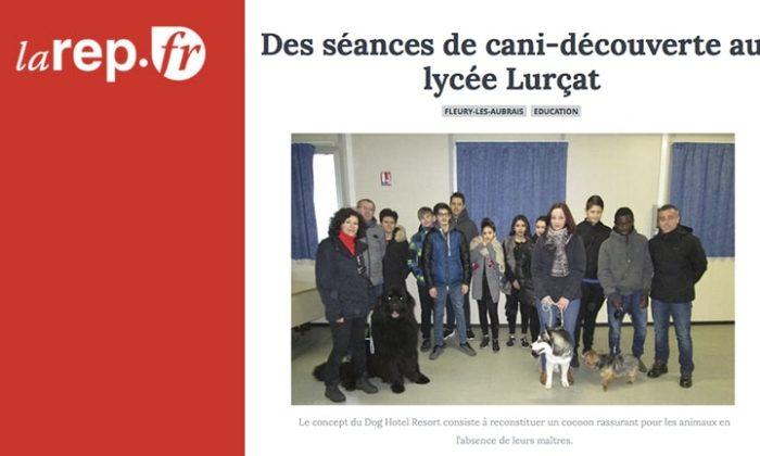Des séances de cani-découverte au lycée Lurçat
