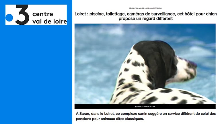 France 3 – Centre-Val de Loire parle du Dog Hotel !