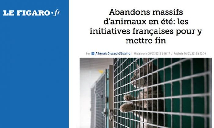 On parle du Dog Hotel Resort sur lefigaro.fr