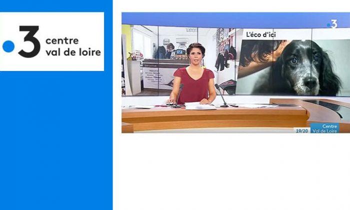 France 3 – Centre-Val de Loire est venu au Dog Hotel cet été !